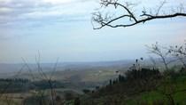 Toscana1 140.jpg